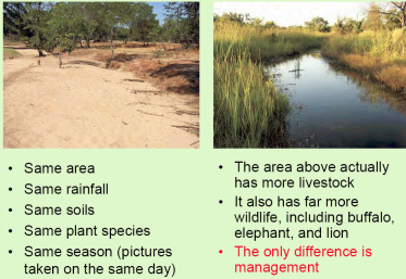 Comparing well-managed land with over-grazed land; Image: soilcarbon.com.au