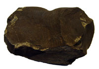 A lump of oil shale. Image credit: ostseis.anl.gov