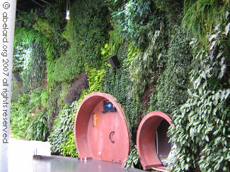 The living wall in l'astralia building