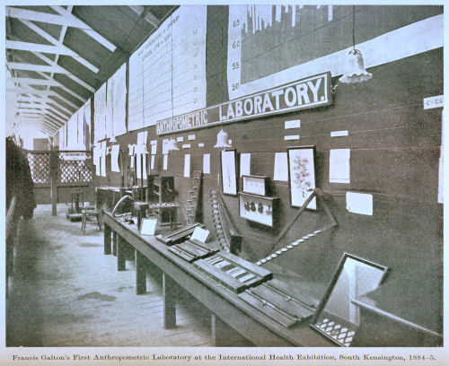 Francis Galton's first anthrometric laboratory at the International Health Exhibition, South Kensington, 1884