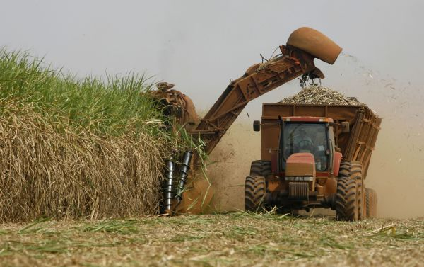 Harvesting sugarcane in Brazil. Image source: whataboutbrazil.com