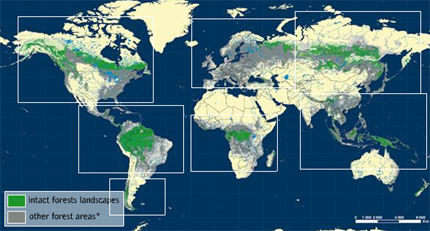 map of the last remaining intact major forests in the world. Image credit: Greenpeace.org