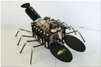 Robot lmechnical lobster. Image credit: US Navy